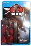 Funko ReAction: Aliens - The Alien (Transparent) Action Figure (SDCC 2013 Exclusive)